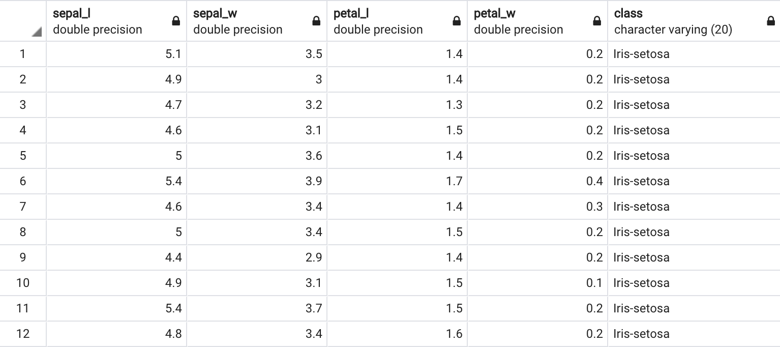 Example of a database filled with the Iris dataset (using PgAdmin4)